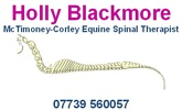 HOLLY BLACKMORE<br />McTIMONEY-CORLEY EQUINE SPINAL THERAPIST<br />07739560057